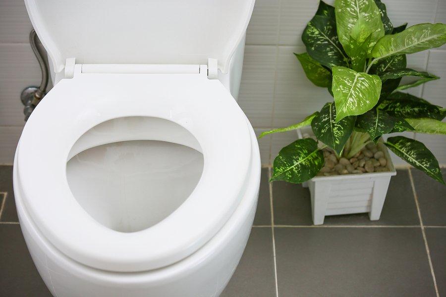 dizziness, incontinence, bladder control, dr. kimberley bell, the bell method, vertigo